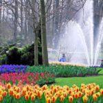 1686711922 150x150 - Туры в парк цветов Кёкенхоф