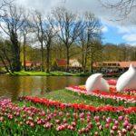 depositphotos 26329011 stock photo beautiful spring flowers in keukenhof 150x150 - Туры в парк цветов Кёкенхоф