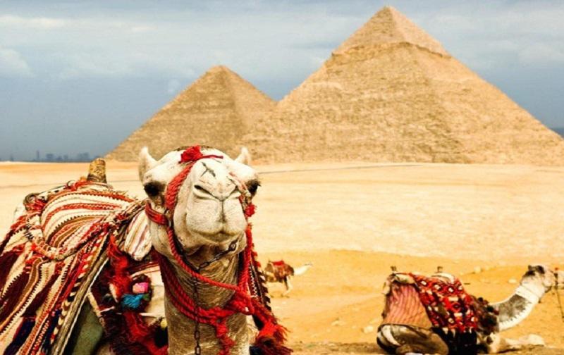 1  k4OXor7pxCxqSMmrG33ww - Преимущества отдыха в Египте