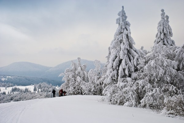 15720072145db2ed2e74b93 - 12 рождественских историй Львов, Карпаты и не только