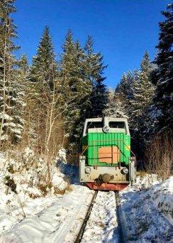 zymovyi-tramvai-2020-342x342