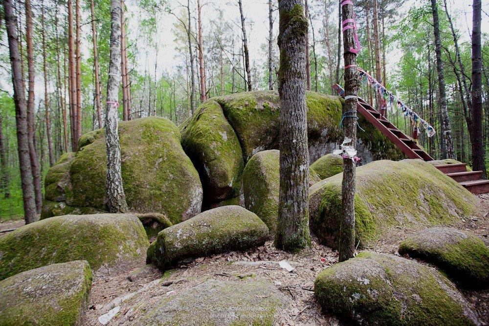 1615893959605095c709cf5 1200x1200 1 - Каминное село, Базальтовые столбы + долина тюльпанов