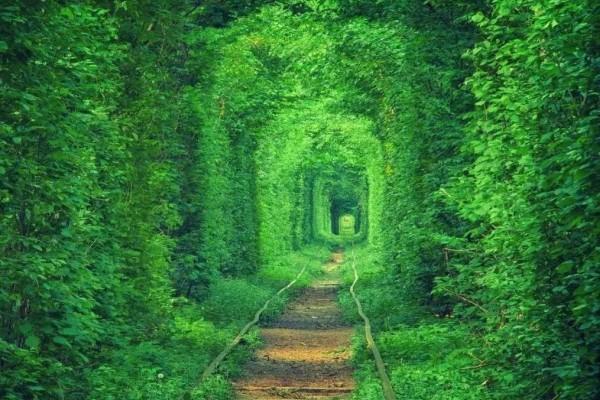 149674914259369456f2318 - Из Пересопницы в Острог + тоннель Любви
